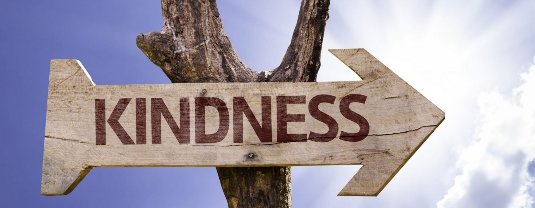 What we need is just kindness